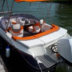 bluestarboat-sunreider-electric14sd